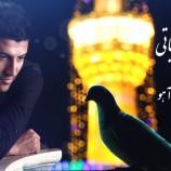 دانلود اهنگ امام رضا با صدای پویا بیاتی با نام حکایت آهو
